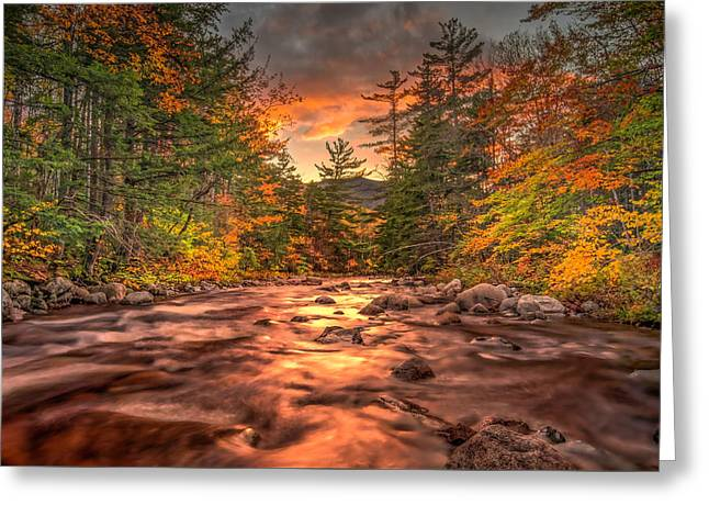 Liquid Gold Of New Hampshire Greeting Card