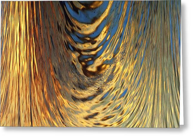 Skip Nall Greeting Cards - Liquid Gold Greeting Card by Skip Nall