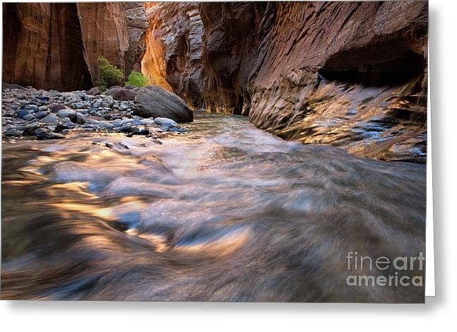 Liquid Gold Utah Adventure Landscape Photography By Kaylyn Franks Greeting Card