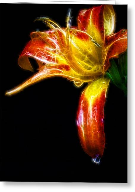 Liquid Lily Greeting Card by Cameron Wood