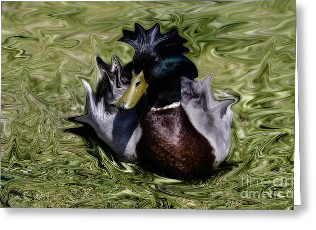Liquid Mallard Greeting Card
