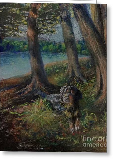 Listening To The Tales Of The Trees Greeting Card