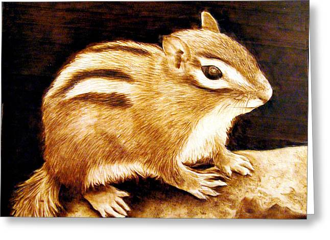 Woodburnings Pyrography Greeting Cards - Little Chipper Greeting Card by Jo Schwartz