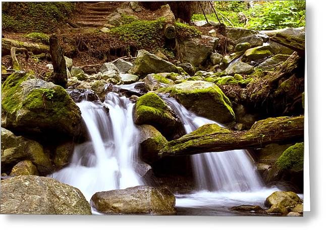 Greeting Card featuring the photograph Little Creek Falls by Gary Brandes