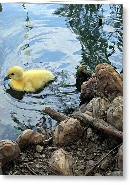 Little Ducky Greeting Card by Angelina Vick