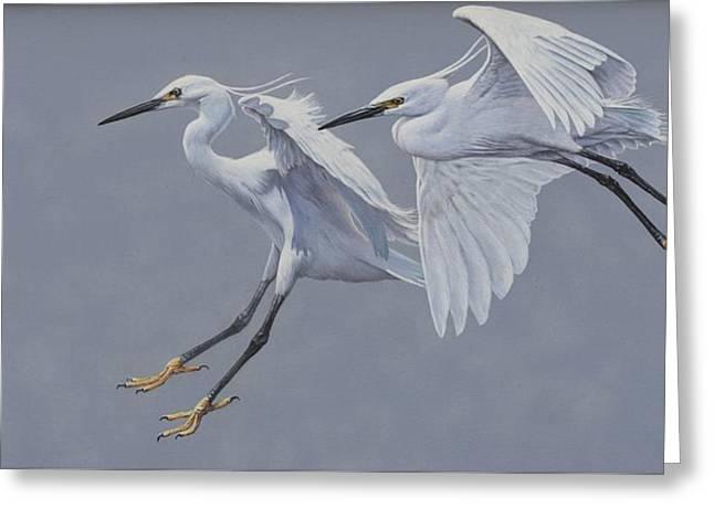 Little Egrets In Flight Greeting Card
