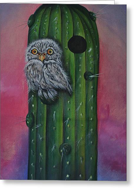 Little Elf Owl Greeting Card