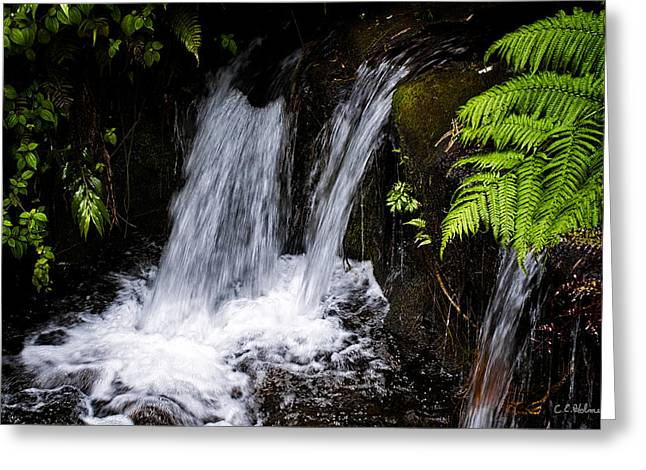 Little Falls Greeting Card by Christopher Holmes