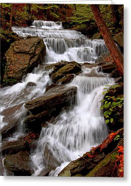 Greeting Card featuring the photograph Little Four Mile Run Falls by Suzanne Stout