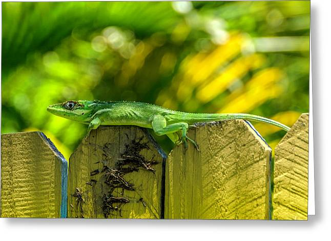 Little Green Visitor Greeting Card