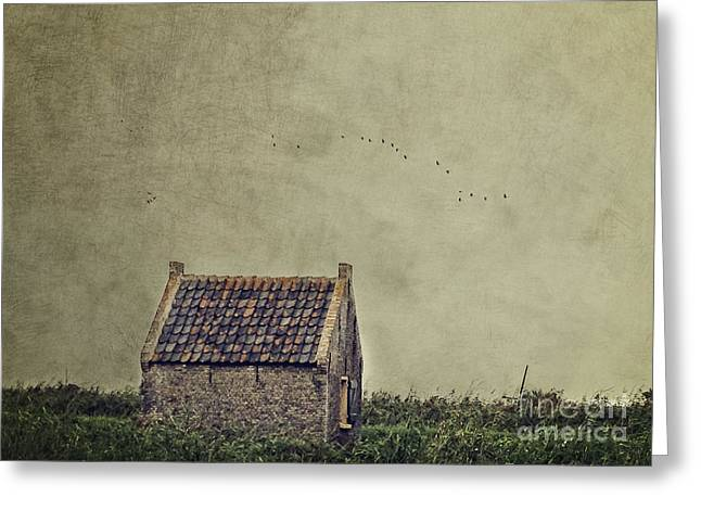 Little House On The Field Greeting Card by Ivy Ho