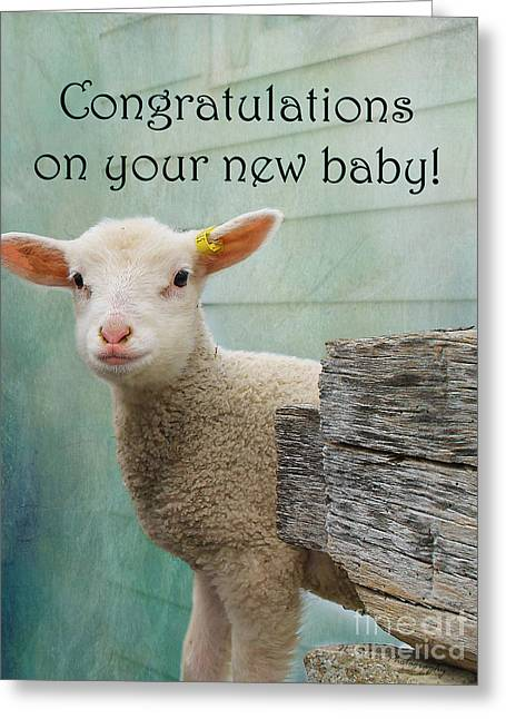 Little Lamb New Baby Greeting Greeting Card by Nina Silver