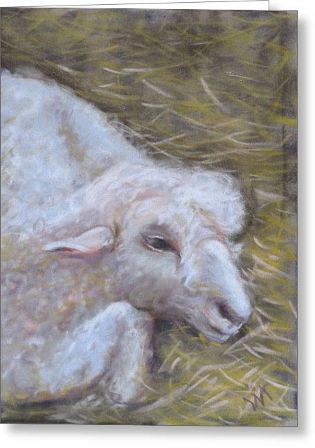 Little Lamb Greeting Card by Wendie Thompson
