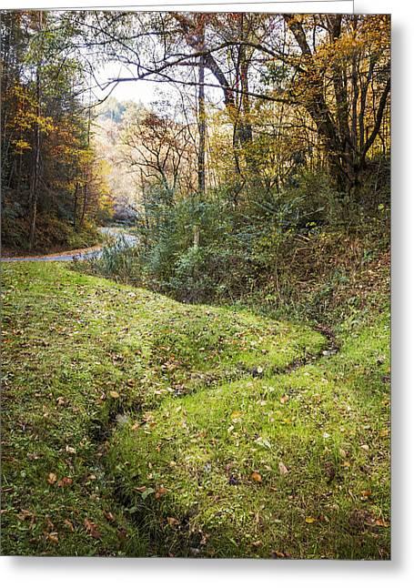 Little Mountain Stream Greeting Card by Debra and Dave Vanderlaan