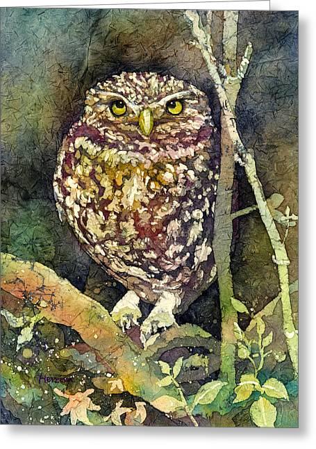 Little Owl Greeting Card by Hailey E Herrera
