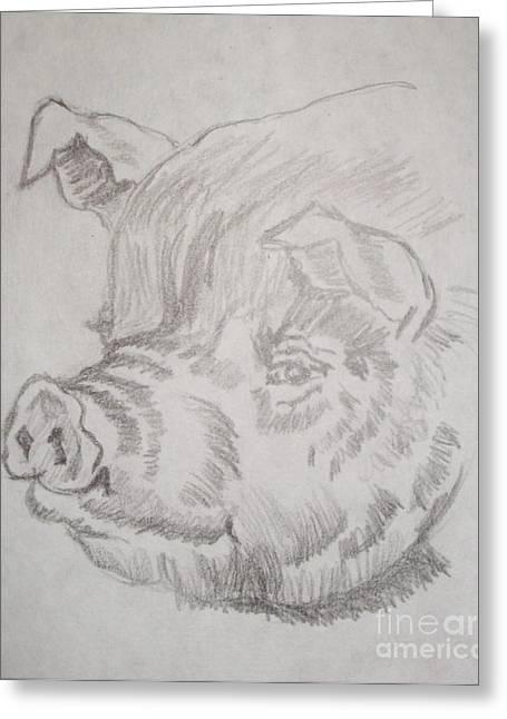 Little Piggy Greeting Card