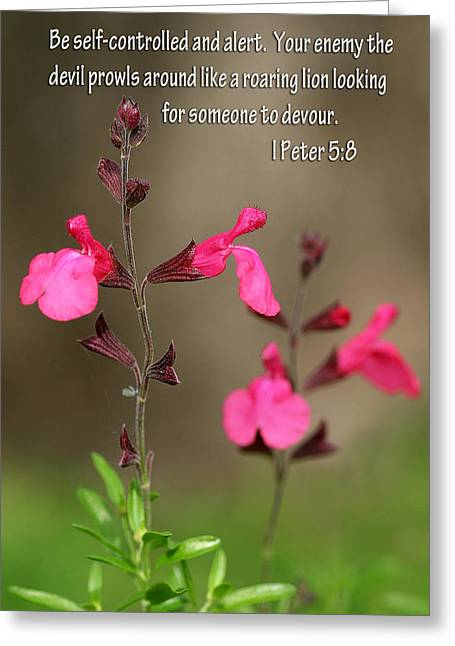 Little Pink Wildflowers With Scripture Greeting Card by Linda Phelps