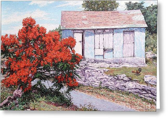 Little Poinciana Greeting Card