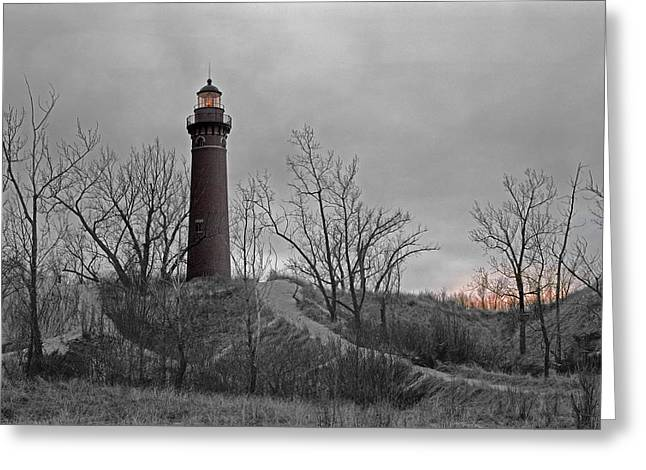 Little Point Sable Light Greeting Card