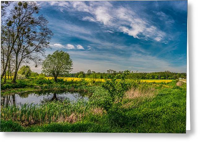 Little Pond Near A Rapeseed Field Greeting Card