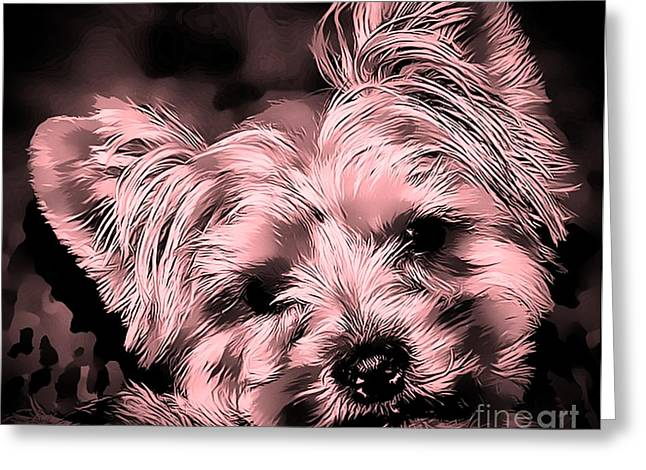 Greeting Card featuring the photograph Little Powder Puff by Kathy Tarochione