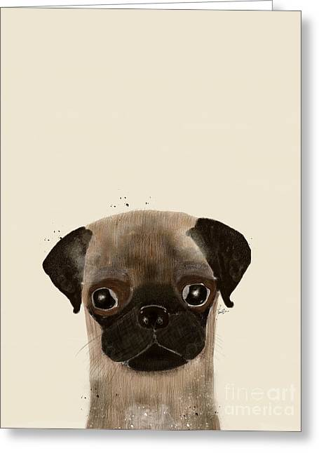 Greeting Card featuring the photograph Little Pug by Bri B