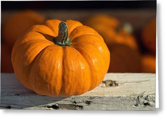 Little Pumpkin Greeting Card by Joseph Skompski