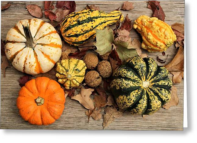 Greeting Card featuring the photograph Little Pumpkins Fall Decor by Sheila Brown