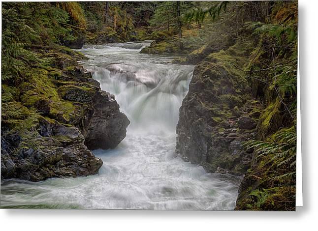 Little Qualicum Lower Falls Greeting Card by Randy Hall
