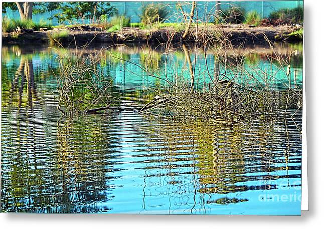 Greeting Card featuring the photograph Little Ripples By Kaye Menner by Kaye Menner