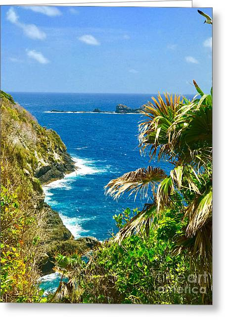 Little Tobago  Greeting Card by Carey Chen