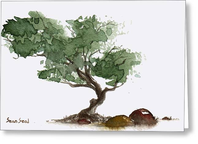 Little Tree 1 Greeting Card