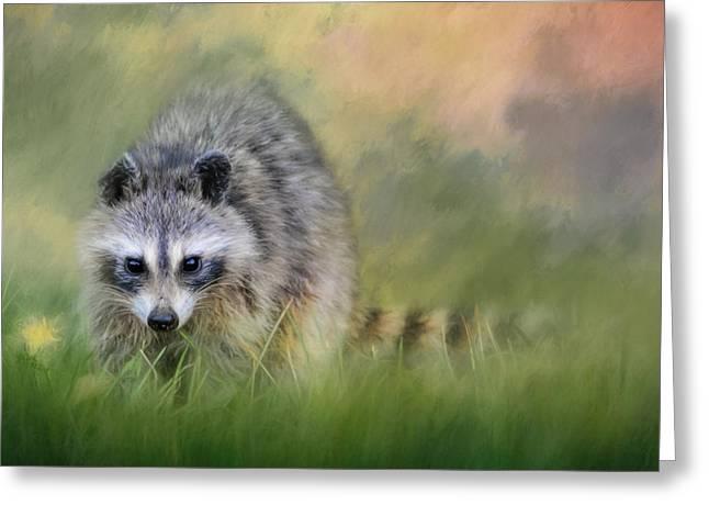 Little Wash Bear Raccoon Art Greeting Card