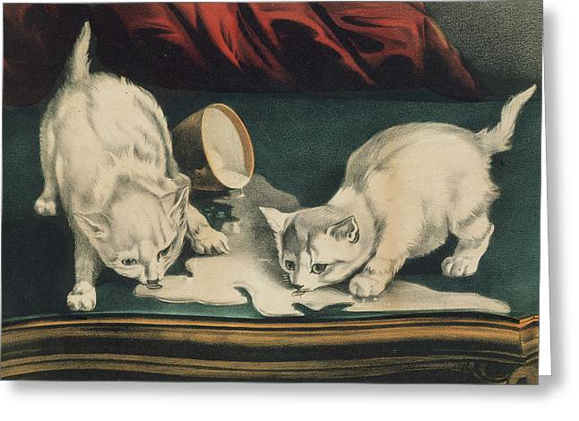 Greeting Card featuring the painting Little White Kitties Into Mischief                                                      by Matthias Hauser