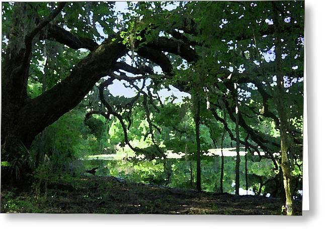 Live Oak Hidden Pond Greeting Card by Marnie Hutcheson