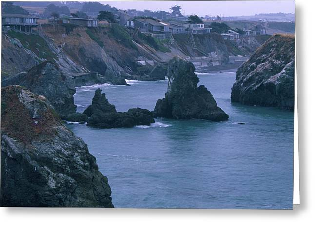 Living On The Edge - Sonoma Coast Greeting Card by Soli Deo Gloria Wilderness And Wildlife Photography