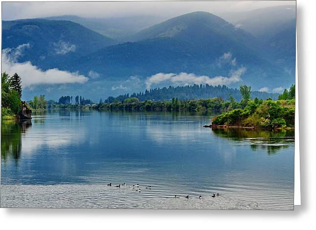 Living Waters Greeting Card by Annie Pflueger