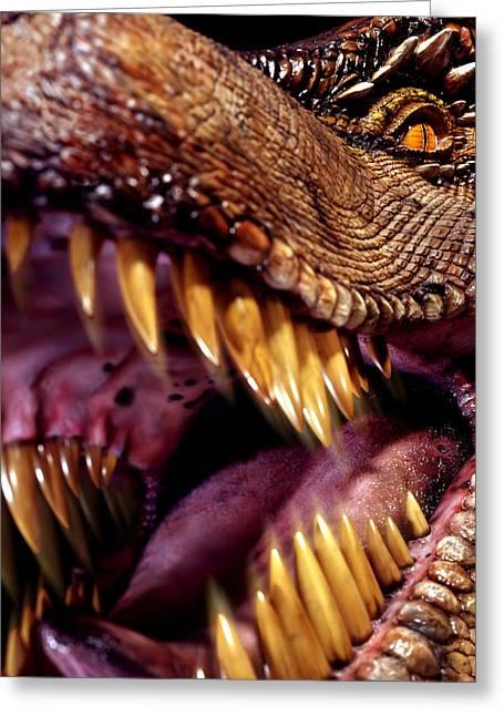 Lizard King Greeting Card by Kelley King