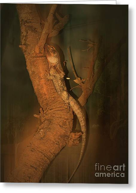 Greeting Card featuring the photograph Lizard On A Tree Trunk by Elaine Teague