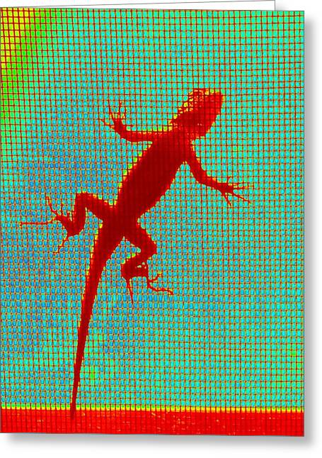 Lizard On The Screen Greeting Card