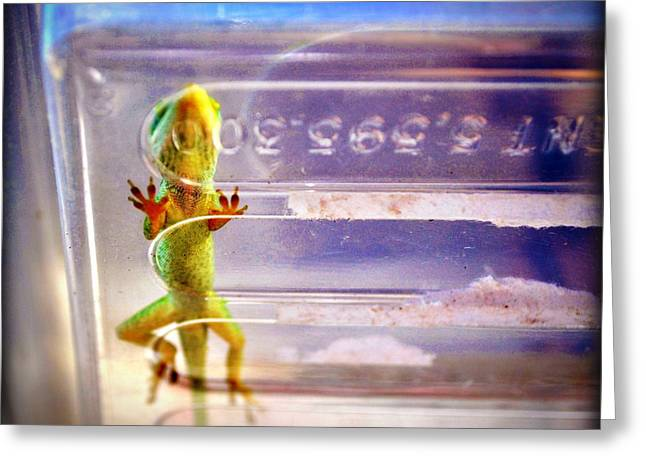Lizardness Greeting Card by Laura Ogrodnik