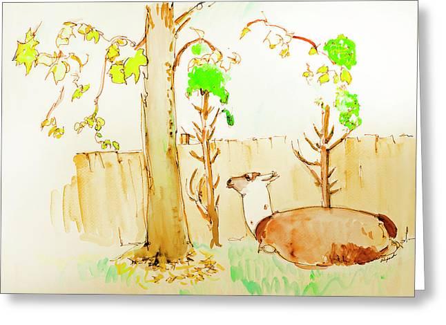 Llama Cedar Leaves Lunch Greeting Card by Rhonda Alexander