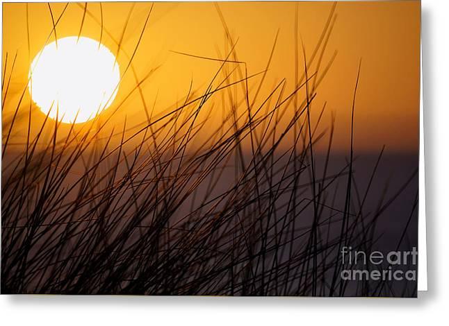 Llangennith Sun Greeting Card
