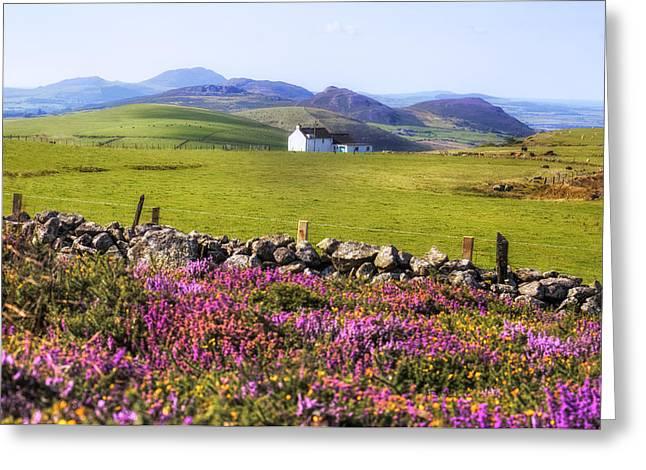 Llyn Peninsula - Wales Greeting Card by Joana Kruse