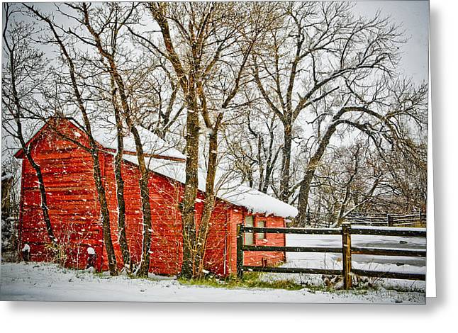 Loafing Shed Greeting Card by Marilyn Hunt