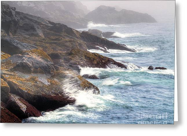 Lobster Cove Greeting Card