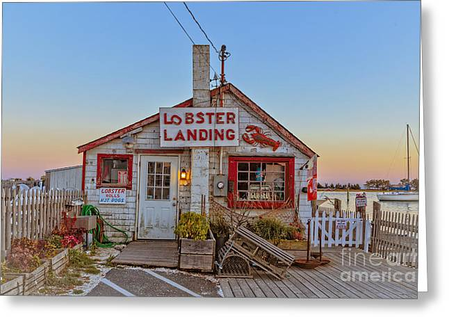 Lobster Landing Sunset Greeting Card by Edward Fielding