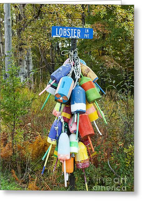 Lobster Buoy Greeting Cards - Lobster  Lane Greeting Card by John Greim
