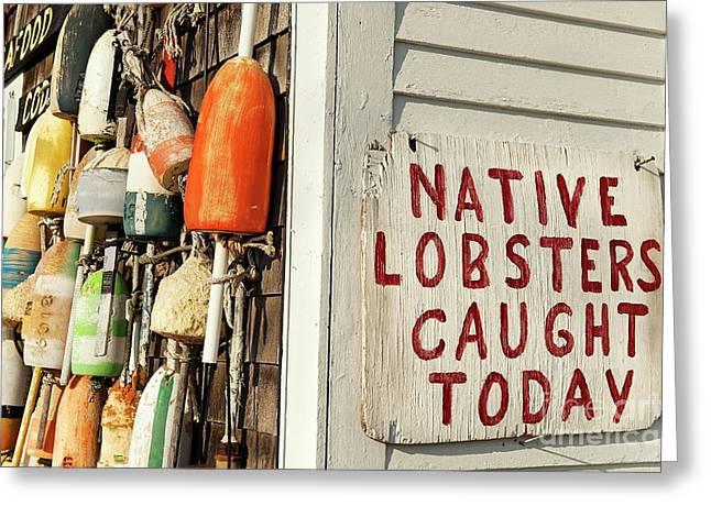 Lobster Shack. Greeting Card by John Greim