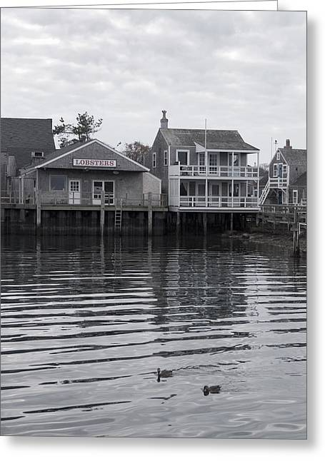 Lobsters - Nantucket Massachusetts Greeting Card